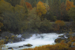 Deadline Falls, Oregon on an early autumn morning with light fog (Bonnie Moreland (free images)) Tags: deadlinefalls oregon umpqua river mist fog fall autumn leaves rocks trees