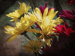 Flowers in the morning sun (novice09) Tags: painterly flowers oil fotosketcher ipiccy art