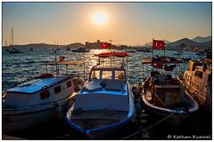 DSCF0479.jpg (DrOpMaN®) Tags: captureoneprofujifilm tatil fujinon m43turkiye korhankumral on1effects fujinonxc1650mmf3556ois fish fuji xe2 outdoor bodrum xc1650mmf3556ois fujifilm sunset