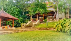 Saman Villas - Garden in Front of Reception 1 (Beninu Andersen) Tags: samanvillas srilanka bentota gard garden lawn luxuryhotels luxury asia green hotel paradise