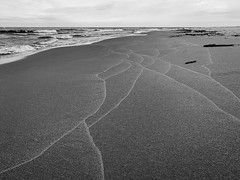 Remnants of Waves (mswan777) Tags: beach shore coast seascape water waves sand horizon sky cloud scenic monochrome ansel black white apple iphone iphoneography mobile st joseph michigan