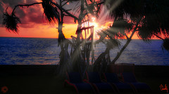 Saman Villas - Sunset Silhouette 1 (Beninu Andersen) Tags: srilanka samanvillas bentota indianocean sunset sunrays sunray twlight silhouette palmtrees redsky paradise luxuryhotels luxurious