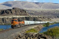 PSAP Grain Train (Joel Hawthorn) Tags: bnsffallbridgesub bnsfrailway columbiarivergorge geet44c4 graintrain