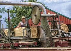 A Cut Above! (jackalope22) Tags: thresher reunion saw steam diesel sawdust