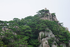 Rock and Pines (Ian #9) Tags: mountain landscape scenery outdoor nature hike peak rock stone tree pine