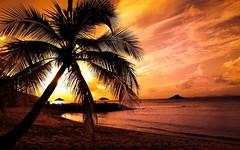 Vẻ đẹp hoàng hôn trên bãi biển Phú Quốc (quynhchi19102016) Tags: ve may bay gia re di phu quoc