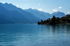 Lake Brienz (Bephep2010) Tags: 2019 7markiii alpen alpha berg bern brienzersee himmel ilce7m3 lakebrienz oberried oberriedambrienzersee sel24105g schweiz see sommer sony switzerland wald alps blau blue forest lake mountain sky summer ⍺7iii kantonbern