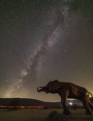 Milkyway and the baby Elephant (@rsjphotos) Tags: milkyway astrophotography borrego springs sculptures metal darksky space galaxy night