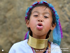2015-11c Kayan Lahwi Burma 2019 (03) (Matt Hahnewald) Tags: matthahnewaldphotography facingtheworld people head neck face eyes mouth tongue expression lookingcamera wearing clothing costume headwear consensual fun conceptual travel tourism childhood exotic ethnic tribal minority rural traditional cultural touristattraction loikow kayahstate myanmar burma asia asian person one female child girl littlegirl nikond610 nikkorafs85mmf18g 85mm 4x3ratio resized 1200x900pixels horizontal street portrait closeup headshot fullfaceview outdoor brass colour posingcamera authentic pullingfaces stickingouttongue makinggrimace giraffewoman brassrings brasscoils kayan lahwi longneck padaung boisterous garb