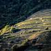 Fully - Valais, Switzerland - Landscape photography