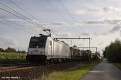 IMG_0014f (vdabeeb) Tags: waasmunster lineas traxx 1862606