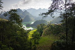 VIETNAM (ste2d - photography) Tags: travelphotography backpacker wanderlust beautifulplaces beautifuldestinations travelpic worldtravel travellers photography reportage travel travelling explore exploration trip people rice fields ha giang bac green valley mountains vietnam