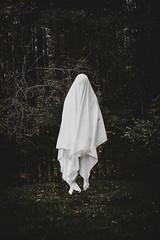 (Emily Boyer Photography) Tags: adirondacks adk adks creepy eerie horror ghost photography photoshop canon5d canonphotography conceptualphotography conceptual woods forest hauntedforest haunted tupperlake emilymartin lightroom