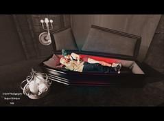 Welcome to my crypt (Irrlicht Photography by Sami Palletier) Tags: adorez besom boudoir catwa doux fanatik hoorenbeek maitreya nerenzo ricielli whatnext