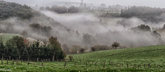 09102015-_DSC0003 (vidjanma) Tags: houffalize automne brume vallée vuissoule