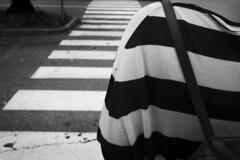 Bianconero (Mango982) Tags: bianconero street blackandwhite shapes forme linee striscie colorpair lines pattern