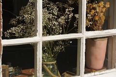 FrontWindow (Tony Tooth) Tags: nikon d7100 sigma 70mm window windowdressing stilllife leek staffs staffordshire