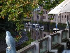 Waterside watchers (Phil Gayton) Tags: flooddefence wall model hawk bird scarer water tree boat building waterside bistro mill tail totnes devon uk