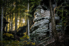 SimachtBilder-2010 (SimachtBilder) Tags: wald wood forst rock fels rocks felsen feen feenhaft fairy romantisch grün green herbst autumn