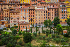 Siena (Ivo.Berta) Tags: italy italia europe city town architecture building view summer holiday house tree green siena history color colour
