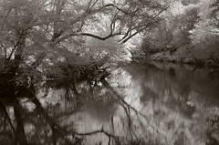 The river of sleep (baro-nite) Tags: enoriver reflections infrared pentax k5 smcpentax11855mm iridientdeveloper
