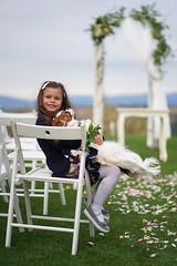 It's time for wedding! (Pavel Valchev) Tags: fe a7iii sony a7m3 ilce ff 85mm bokeh wideopen child dog children wedding celebration lens af eyeaf