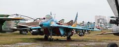 31 White Ukrainian Air Force Mikoyan-Gurevich MiG-29 Fulcrum (Niall McCormick) Tags: oleg antonov state aviation museum kyiv kiev ukraine 31 white ukrainian air force mikoyangurevich mig29 fulcrum