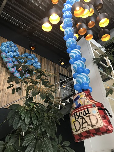 Ballonslinger Vaderdag Watertuin Spijkenisse