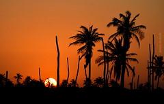 Quarta-sunset (sonia furtado) Tags: quartasunset sunset pds pordosol contraluz icapuí ce ne brasil brazil soniafurtado
