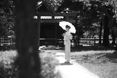 wife (Typ250) Tags: 東京都 日本 leicam leica leicammonochrom monochrome mmonochrom summarex summarex85cm summarex85mm summarexf85cm115 yutaka kimono