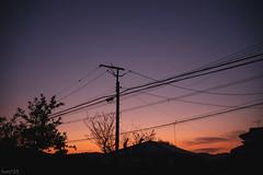 空 (fumi*23) Tags: ilce7rm3 sony sel35f18f 35mm emount fe35mmf18 sky dusk twilight a7r3 utilitypole ソニー