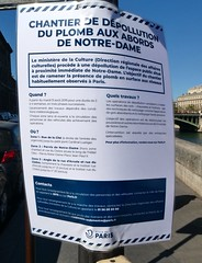 Get the Lead Out (William Young Fascinations) Tags: paris france notredame fire lead envrionment pollution humanhealth