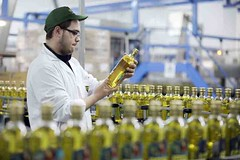 24791_OLIVEOIL09 (FAO News) Tags: italy europe foodprocessing oliveoil olives processedplantproducts agroindustry qualitycontrols productquality foodquality foodsafety laboratories productionline benevento