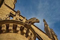 Catedral de Sevilla (jaseto2009) Tags: sevilla españa andalucía catedraldesevilla gárgola sonyilce7 fe35mmf28za