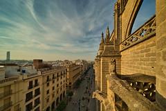 Avenida de la Constitución - Catedral. Sevilla (jaseto2009) Tags: sonyilce7 laowa12mmf28 sevilla andalucía españa catedraldesevilla