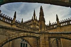Catedral de Sevilla (jaseto2009) Tags: sonyilce7 fe35mmf28za sevilla andalucía españa catedraldesevilla pináculo arbotante