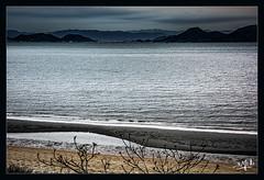 8ème jour / 8th day - Crépuscule / Dusk - Naoshima (christian_lemale) Tags: naoshima tombée de la nuit dusk île island japon mer sea japan côte coast 直島 日本