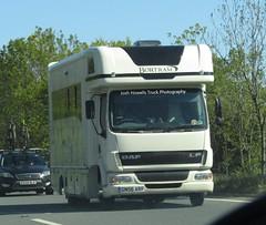 GN56 ARF At Chirk (Joshhowells27) Tags: lorry truck daf lf daflf horsebox unmarked gn56arf