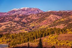 Golden Hour from Salt Creek Pass (Wycpl) Tags: fallcolors wyominglandscape goldenhour jcpphotography mountains