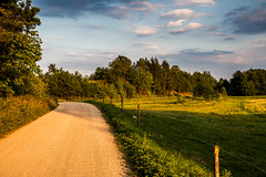 Rural Poland (Piotr_PopUp) Tags: suwalszczyzna rosochatyróg wigry poland polska podlasie landscape wieś rural road dirt countryside summer goldenhour travel