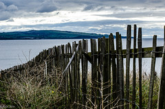 Down We Go!! (BGDL) Tags: lightroomcc nikkor55200mmf4556g bgdl landscape seascape nikond7000 prestwick gatesandfences week41 weeklytheme flickrlounge
