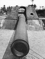 the big german gun of leugenboom (foundin_a_attic) Tags: big german gun leugenboom battery pommern artillery krupp ww1 38 cm 15 inch sk l45 cannon koekelare belgium coast defence western front battlefields 19141918 long max lange naval range 50 km shielded armour heavy