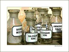 All You need ... (Badenfocus_1.500.000+ views_Thanks) Tags: badenfocus fujifilmx20 rosebusch breuste sammlung collection ausstellung exhibition rosebuschverlassenschaften hannover ahlem