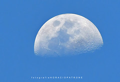 LUNA  A LA TARDE 17.45 hs  Domingo 7/10/ 2019 RESERVA COSTANERA SUR .ARGENTINA .RECS (FISHERMAN'S PASSION AND OPEN NATURE...) Tags: moon lunadedia nature horaciopatronephotography moonday