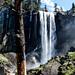 Yosemite Nationalpark / California