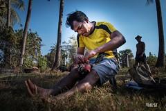 Cura e dedizione. (iw2ijz) Tags: nikon reflex d500 person people persone viaggio trip travel cambodia cambogia cock galli combattimento fighting