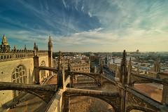 Catedral de Sevilla (jaseto2009) Tags: sonyilce7 sevilla andalucía españa catedraldesevilla arbotante laowa12mmf28
