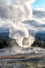 Old Faithful (rebeccalatsonphotography) Tags: geyser autumn september oldfaithful steam uppergeyserbasin yellowstone nationalpark wyoming wy canon 1dxmkii morning geology geologic rebeccalatsonphotography telephotolandscape telephoto 100400mm 100400 14x extender