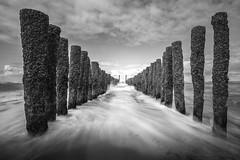 Groynes (alowlandr) Tags: groyne beach coast breakwater sand sky water sea northsea nopeople day inarow woodenpost oostkapelle zeeland netherlands