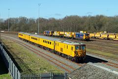 73138 73964 73213 Tonbridge West Yard (CD Sansome) Tags: tonbridge train trains west yard network rail test 73 73138 73964 73213 gbrf gb railfreight
